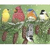 Bird Puzzle 300 Piece for Kids Adults Winter Snow Cardinal Nuthatch Chickadee Bluebird Yellow Finch Jigsaw Puzzle Unique Audubon Backyard Bird Puzzle Gift for Bird Lovers and Puzzle Lovers
