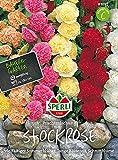 Sperli - Rose trémière magnifique mélange de bulbes à fleurs d'été, longue période -