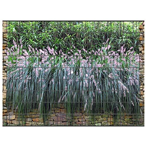 PerfectHD Zaunsichtschutz - Motiv Graswand - Sichtschutz für den Garten - 2,50 x 1,80 x 0,19 m - 9 Streifen - 30 Varianten