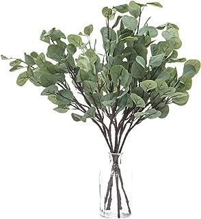 Best faux eucalyptus branches Reviews