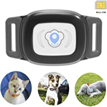gps for your cat