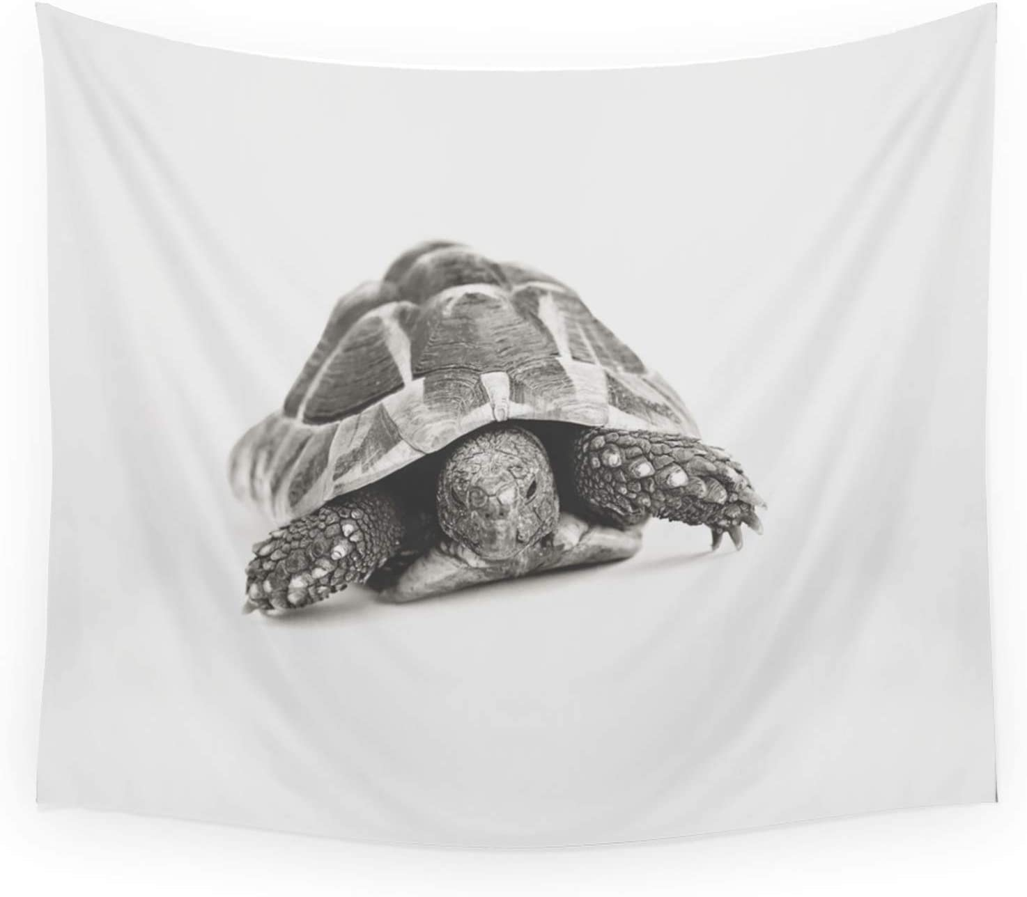 Society6 Tortoise by Ranking TOP5 Vicky Lewis on - discount Hanging Wall 88