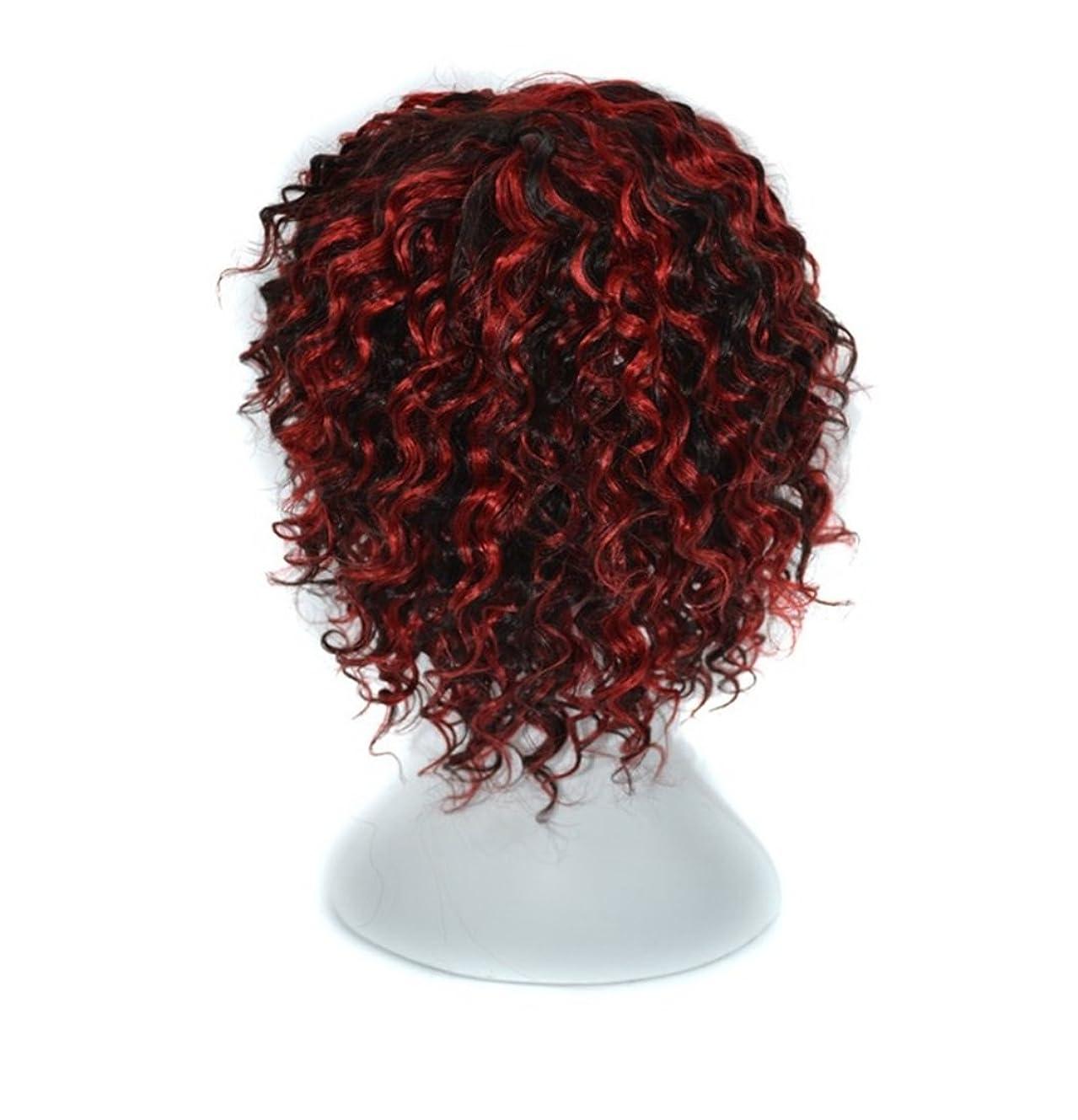 持つ優勢同級生Doyvanntgo 女性のための14インチのリアルな人間の髪ブラックフローティングレッドまたはライトブラウンディープカールウィッグと傾いたバングヘアは染められないウィッグセット (Color : Black floating red)