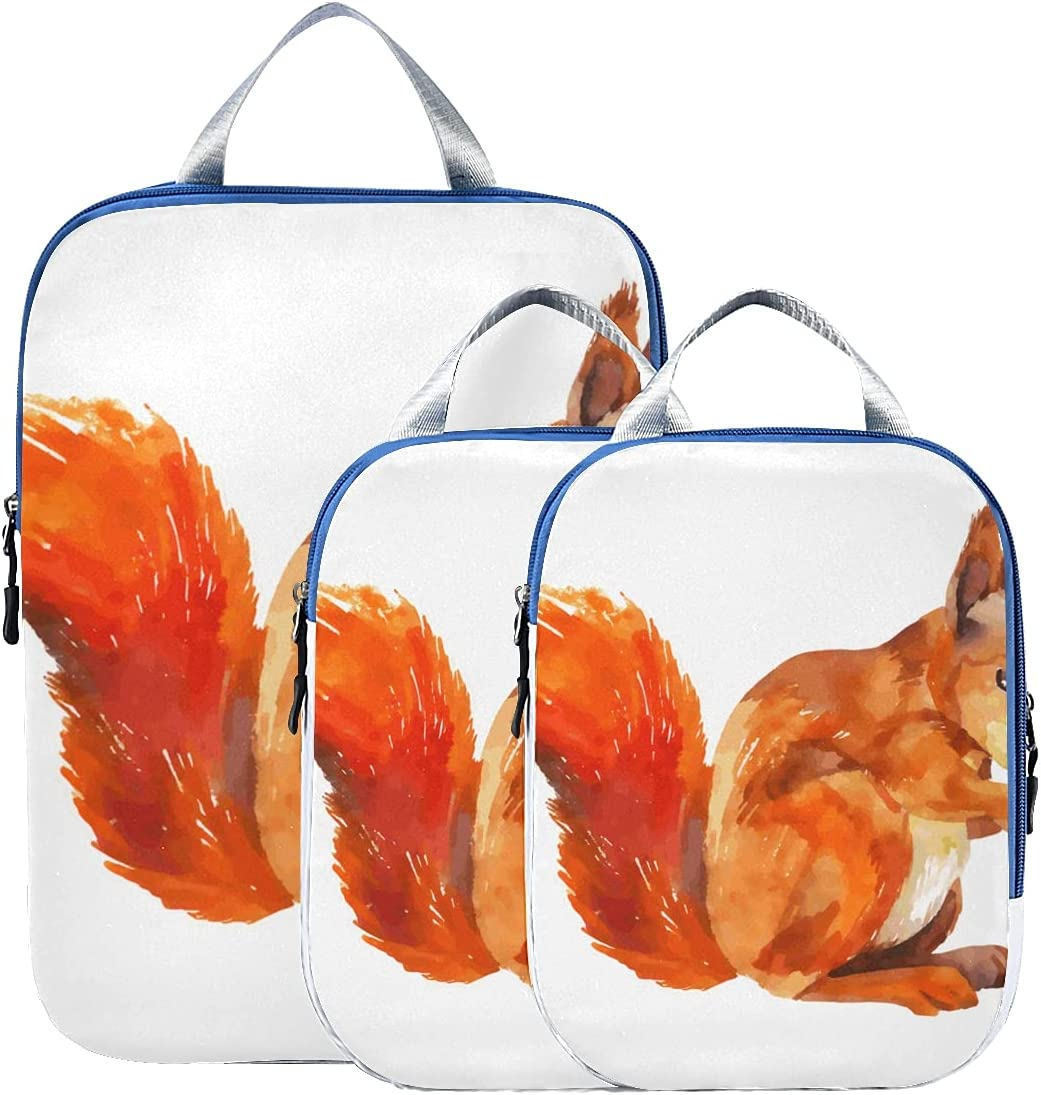 Luggage Organizer Set Cute Little In stock Large-scale sale E Suitcase Squirrel Organizers