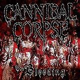 Cannibal Corpse: The Bleeding-Reissue (Audio CD)