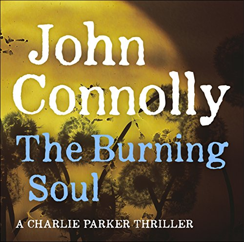 Couverture de The Burning Soul