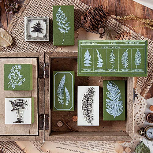 Dizdkizd 8 Pieces Rubber Stamps, Vintage Rubber Seal with Fern Leaf Patterns, Mounted Plant Stamps for DIY, Journals, Scrapbooking, and Daily Planners