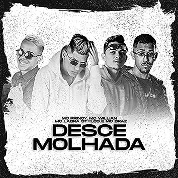 Desce Molhada (feat. MC Braz) (Brega Funk)