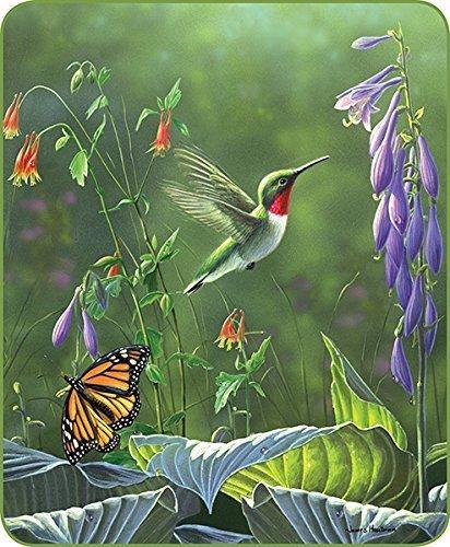 Comfort Hummingbird Blanket