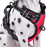PoyPet No Pull Dog Harness, Reflective Vest Harness with Front & Back 2 Leash Attachments and Easy Control Handle for Small Medium Large Dog ( Red , Medium)