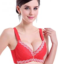 YLISHI Bras for Women Sexy Push Up Bra Lace Embroidered Brassiere