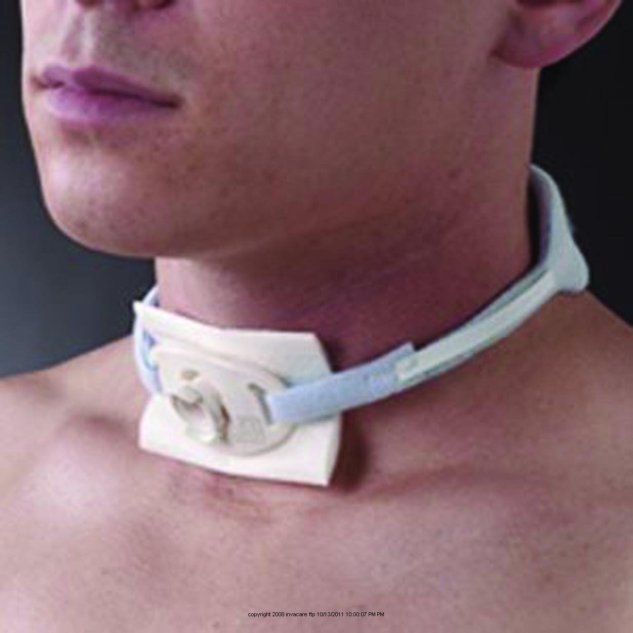 Foam Trach Collar half Tie Ties 1 BOX 12 Ranking TOP17 EACH Med