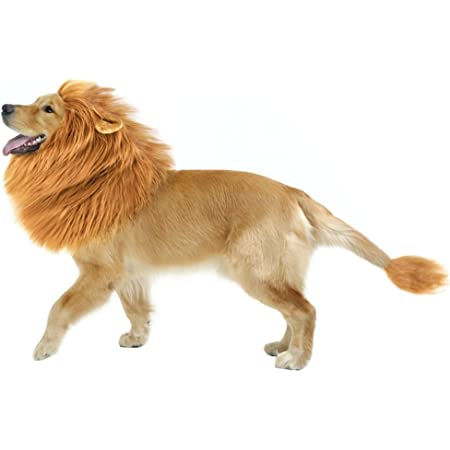 CPPSLEE Lion Mane for Dog Clothes, Realistic Lion Wig for Medium to Large Sized Dogs, Dog Christmas Gifts with Tail(Brown)