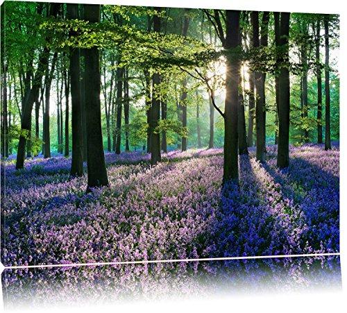 TOPSELLER Wandbilder (Lavendel im Wald 120x80cm) Ruhe Stille Harmonie Bilder fertig gerahmt auf Keilrahmen xxl. Kunstdruck auf Leinwand. Günstig inkl Rahmung
