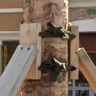 arborbrace tree stakes