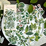 Green Plants Style Stickers Pack 60 Pcs Foliage Stickers Botanical Stickers Decals for Laptop Bumper...