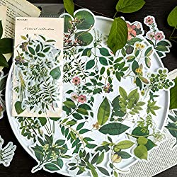 green plant stickers