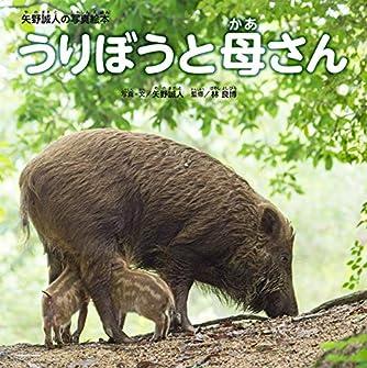 うりぼうと母さん (矢野誠人の写真絵本)