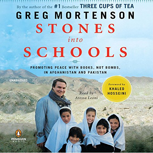 Stones into Schools cover art