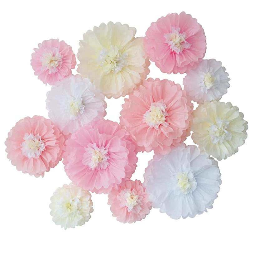 Mybbshower Pink White Tissue Paper Chrysanth Flowers for Wedding Baby Shower Nursery Room Parties & Events Decorations Pom Poms Pack of 12