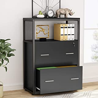 Tribesigns 2 Drawer File Cabinet with Lock, Large Modern Lateral Filing Cabinet Printer Stand with Metal Wire Open Storage Shelves for Home Office (Black)