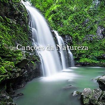 Canções da Natureza: Música Relaxante para Meditação e Relaxamento, Alívio do Estresse, Sono Saudável