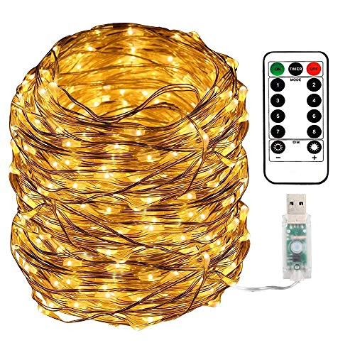 Areskey LEDイルミネーションライト フェアリーライト USB式電源供給 100球 10M 100 LED Fairy Lights ジュエリーライト 防水ワイヤーライト 8種類の点滅モード リモコン付き 調節可能な明るさ 屋外 室内 寝室の装飾用 ガーデンライト 正月 クリスマス 飾り ストリングライト ロープライト Christmas Lights (ウォームホワイト)