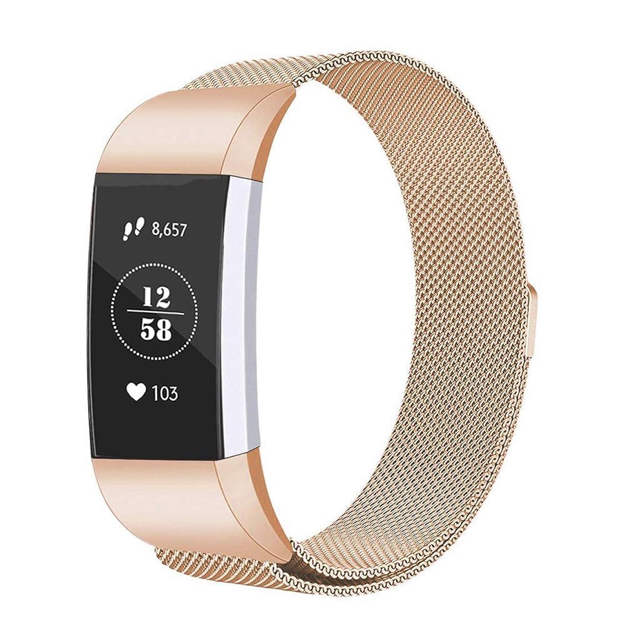 欲求不満枯渇属性METEQI バンド コンパチブル 適応 Fitbit Charge 3/3 SE,トステンレス鋼バンド 交換ベルトユニークなマグネットロック付き (L, ゴールド)