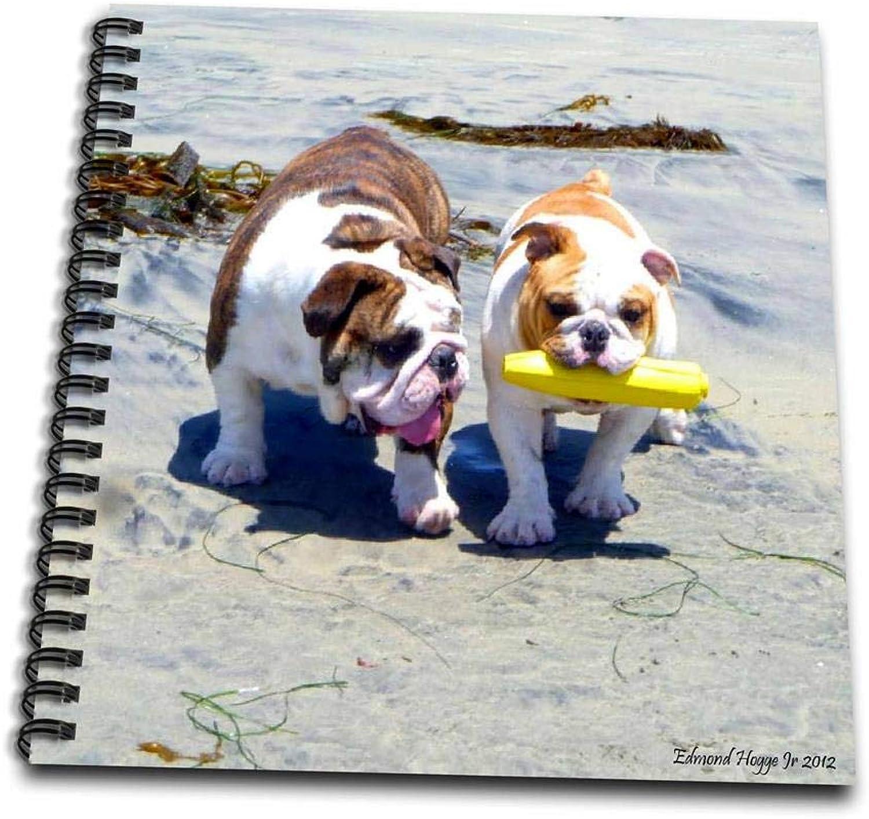3dpink db_46505_1 The English Bulldog Stroll Drawing Book, 8 by 8