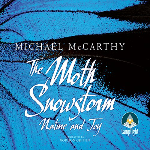 The Moth Snowstorm cover art