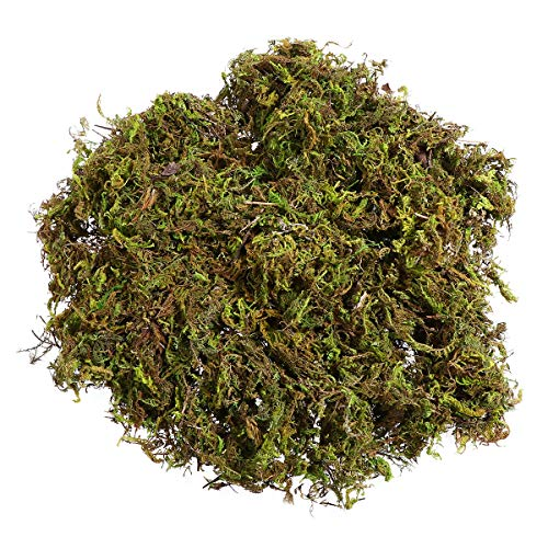 Winomo 3 Packs of Artificial Moss, Fake Green Lichen Plants for Home, Garden, Patio Decoration - 60g/Pack
