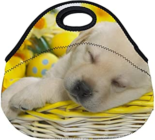 DKISEE Dog Sleeping In Basket Large & Thick Neoprene Lunch Bags Insulated Lunch Tote Bags Cooler Warm Warm Pouch for Women Teens Girls Kids Adults