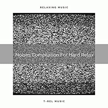 Noises Compilation For Hard Relax