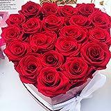 Corazón de rosas preservadas, rosas eternas regalo especial...