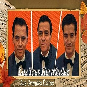 Los Tres Hernández - Sus Grandes Éxitos