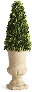 Napa Home and Garden Preserved Greens Topiary in Urn