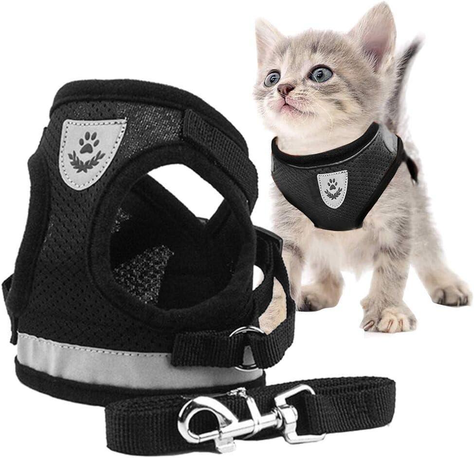 gato con arnés de seguridad para coches