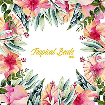 Tropical Beats 2019: Chill Paradise, Summer Music 2019, Holiday Music & Relax, Modern Songs, Deep Relaxation