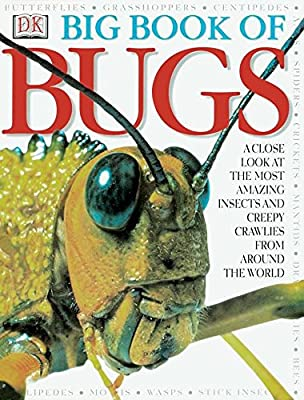 Need a bug book? Big Book of Bugs is the one to try.