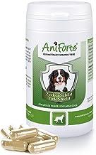 AniForte Thick Shield para Perros (35 a 50 kg) 60 cápsulas. Producto 100% natural. Complejo de Vitamina B que Actúa como Escudo Anti-Garrapatas y Parásitos.