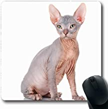 Ahawoso Mousepads for Computers Breed Sphynx Bald Cat Sphinx Naked Wildlife Purebred Nature Hairless Canadian Cute Domestic Feline Oblong Shape 7.9 x 9.5 Inches Non-Slip Oblong Gaming Mouse Pad
