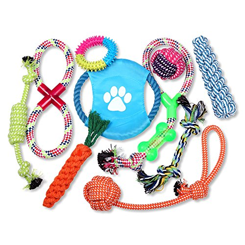 Schramm® 10- teiliges Hunde Spielzeug aus Seil Kauspielzeug Dog Hund Kauspielzeug Baumwollknoten Hundespielzeug 10 Teile Kauspielzeug