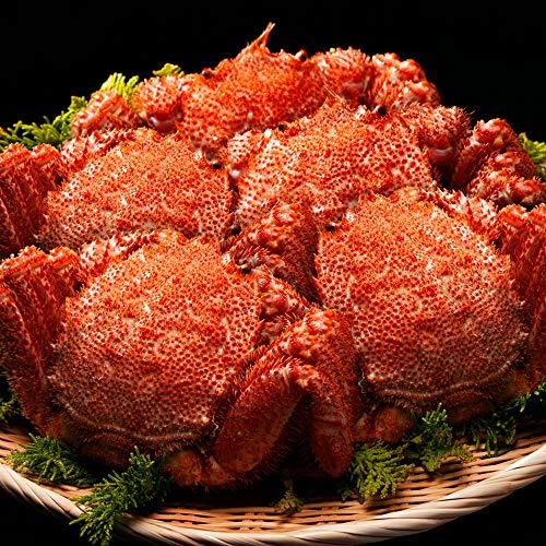 毛蟹 計2.85kg (570g × 5尾) 浜茹で 毛ガニ ボイル 毛がに カニ味噌 送料無料