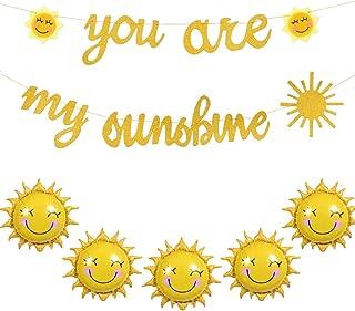 HAIOPS Sun Flower Foil Balloons You are My Sunshine Banner Smiley Sunshine Sun Aluminum Balloon Sun Banner Birthday Wedding Baby Shower Decoration