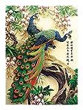 Puzzle Adultos Peacock Dynasty Jigsaw Puzzle - 300/500/1000 Piezas para adultos Niños Gámes Tõyy- Cada pieza es única, piezas encajadas juntas perfectamente (Green Peacock Duple bajo orquídea) para Ad