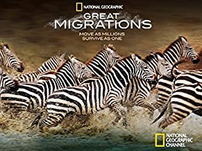 Great Migrations Volume 1