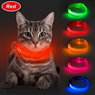 BSEEN LED Dog Collar, USB Rechargeable Light Up Pet Collar for Small Dog, Glowing Safety Cat Collar with Adjustable Nylon Webbing High Visibility for Dogs & Cats