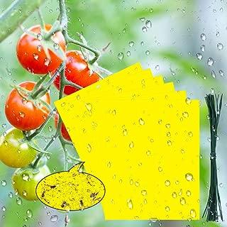 BUZIFU 30pcs Trampas para Insectos Trampas Pegajosas de