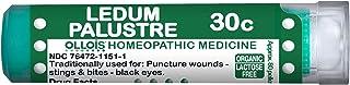Ollois Organic, Lactose-Free Ledum Palustre 30C Homeopathic Medicine, Pellets, 80 Count for Puncture Wounds, Stings & Bites