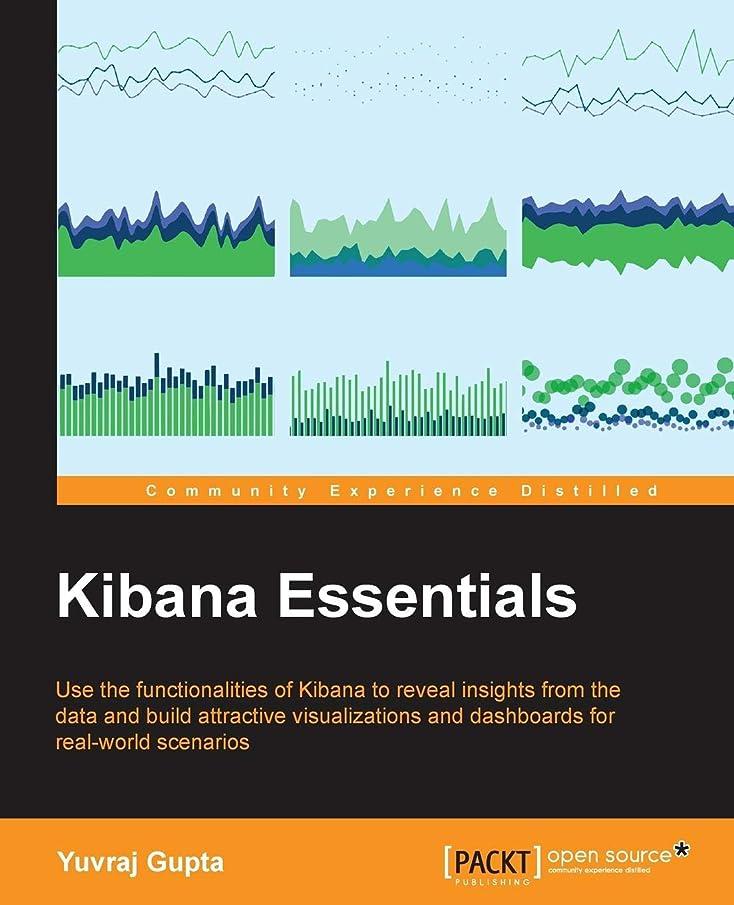 解き明かすペナルティメアリアンジョーンズKibana Essentials
